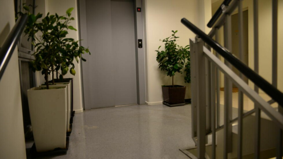 VENTET I OPPGANGEN: Politiet tror den drapssiktede 47-åringen ventet i oppgangen før paret der en nå er drept og en annen er hardt skadd kom hjem. Foto: Trym Mogen / Dagbladet