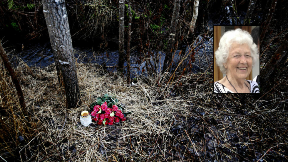 FUNNET HER:  I denne bekken like ved der hun ble sluppet av i taxien, bare 80 meter fra leiligheten hennes, ble Bjørg Elinore Strand funnet død onsdag kveld 5. november i år. Foto: Jacques Hvistendahl / Privat