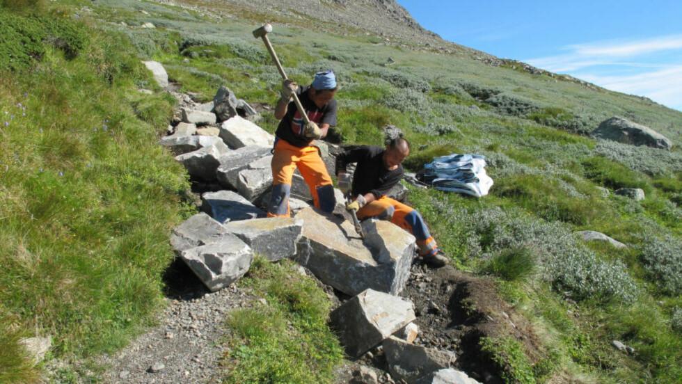 BÅRET STEIN TIL FJELLS: Hele 600 tonn er fraktet inn for å lage den nye turstien ved Hallingskarvet for å verne fjellet. Prosjektet hatt profesjonell hjelp av nepalske sherpaer. Foto: PETTER BRAATEN / STATENS NATUROPPSYN