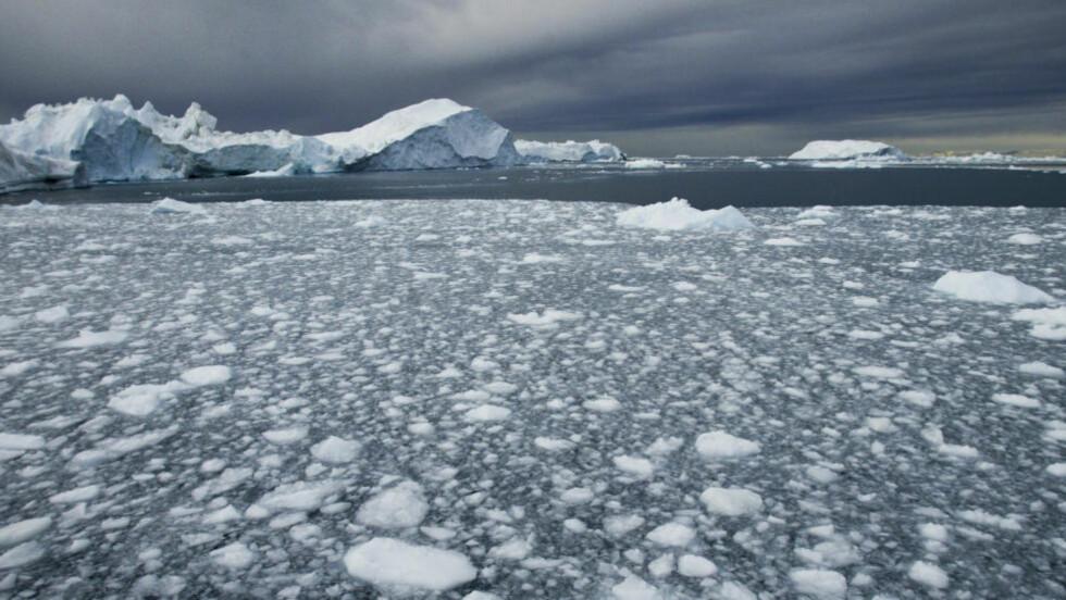DANMARK VIL HA: Danmark kan gjøre krav på områder i Arktis gjennom at Grønland er dansk territorium. Foto: Jan-Morten Bjørnbakk / NTB Scanpix