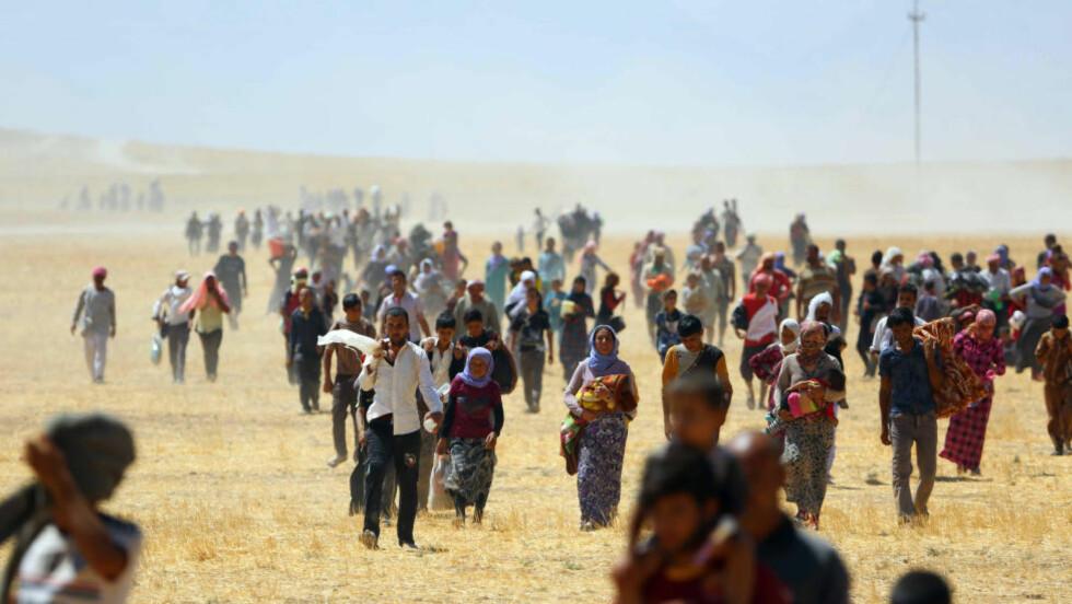 BLE BELEIRET:  En 17 år gammel jente forteller at hun og rundt 40 andre jenter og kvinner blir holdt fanget av medlemmer fra terroristgruppa IS, like ved Sinjar-fjellet. I midten av august klarte om lag 80 000 yezidier å flykte fra fjellet, etter at fjellet i flere dager blitt beleiret av militante islamister fra IS, som truet med å drepe yezidiene dersom de ikke konverterer til islam. Foto: Emrah Yorulmaz/Anadolu Agency/Getty Images/Scanpix
