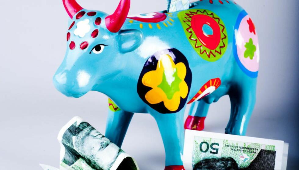 - SVEKKET:  - Framtidsutsiktene for norsk økonomi er svekket, noe som påvirker synet på vår egen lommebok, sier Silje Sandmæl, forbrukerøkonom i DNB.