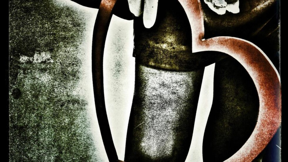 SKAL, SKAL IKKJE:  Forfatter A. Audhild Solberg har i 30 år vært trofast mot nynorsken, men nå folkens, nå kan det være slutt. Finito. The End. Hjerte smerte?