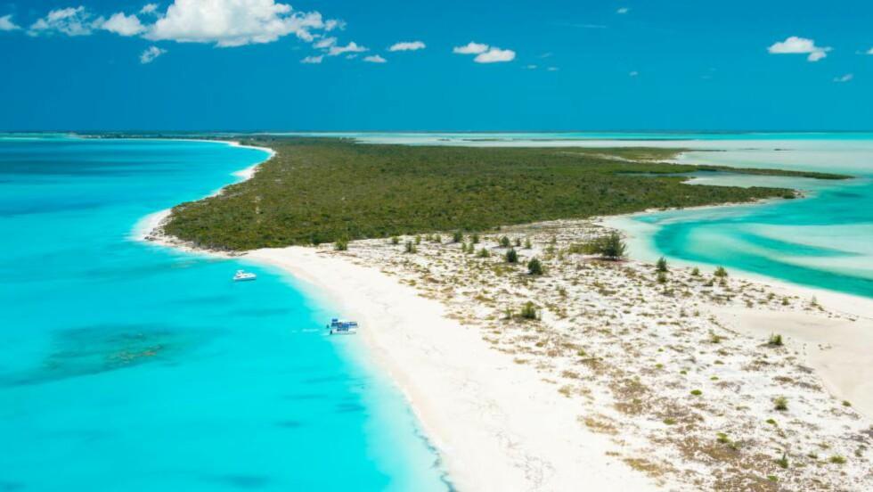 KAN BLI DIN: Water Cay er på 435 mål, er 3,2 kilometer lang, har imponerende strender, klipper og krystallklart vann. Lett tilgjengelig er den også. Foto: PROVO PICTURES