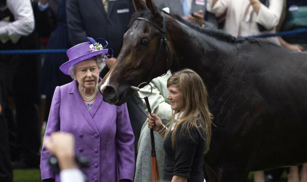 HESTE-TRØBBEL: Dronning Elizabeth og hesten Estimate fikk en dårlig torsdag. Estimate som eies av den britiske dronningen har levert en positiv dopingprøve. Foto: AFP PHOTO / CARL COURT