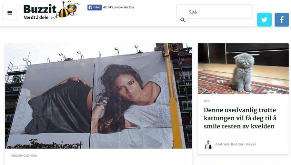 TYERIANKLAGES: Det norske «delingsnettstedet» Buzzit får kritikk i dagens Aftenposten for å kopiere andre redaksjoners saker. Det har også forekommet at nettstedet har gjort det uten at det framkommer i saken. Faksimile: Buzzit.no
