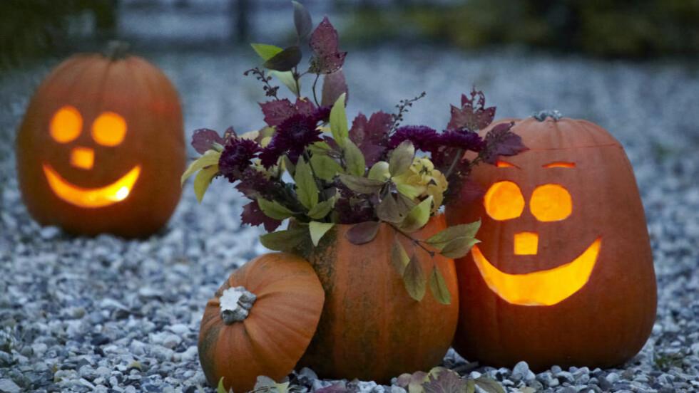 KOMMET TIL NORGE:  De siste årene har Halloween-feiringen også kommet til Norge, og her får du tips til fem skumle retter du bør servere dersom du skal invitere til fest 31. oktober. Foto: CARINA KRÜGER