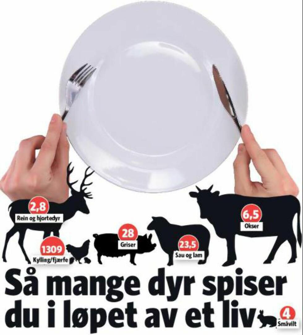 TALLENE: Det blir en del dyr per person i løpet av et liv. Grafikk: Kjell Erik Berg / Dagbladet