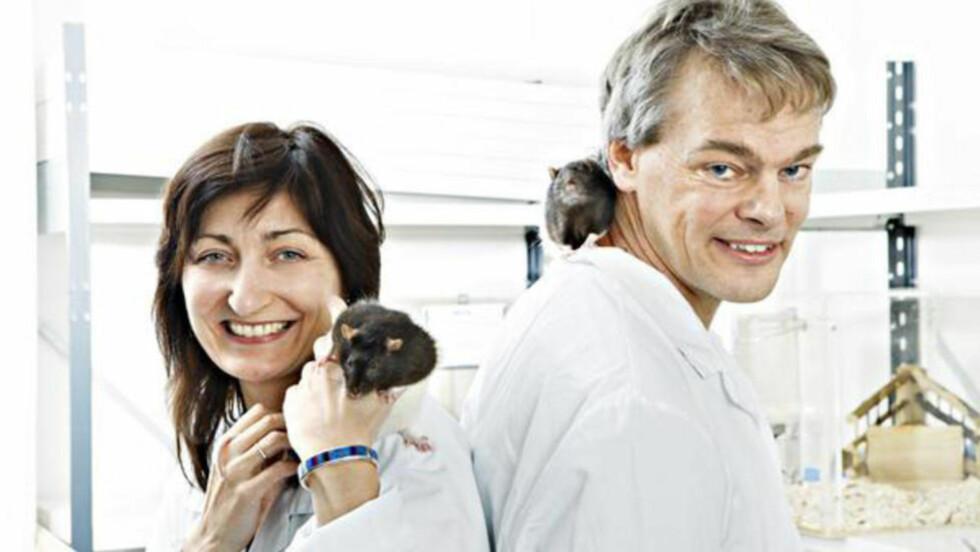 MED ROTTER: Det norske ekteparet May-Britt og Edvard Moser fikk Nobelprisen for sin hjerneforskning. Foto: NTNU