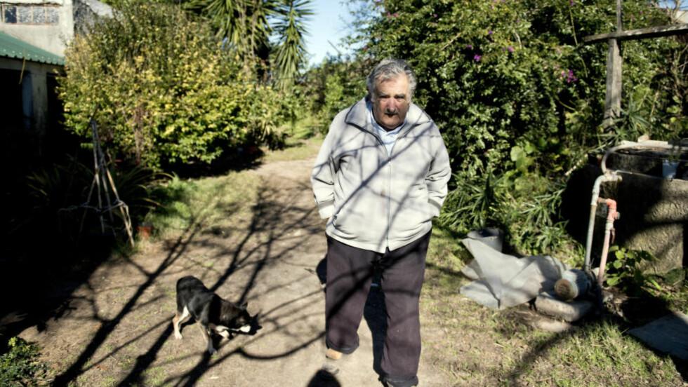 PRESIDENTENS KAMP: - Det er bedre å avmystifisere det forbudte, derfor legaliserer vi marihuana, forteller president Jose Mujica.Foto: Matilde Campodonico