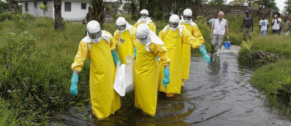 EBOLAEPIDEMIEN:  Ebola har så langt krevd over 4000 menneskeliv. Dette bildet er tatt i Marshall i Liberia, hvor helsearbeidere frakter vekk en person som har dødd av sykdommen. Foto: EPA/AHMED JALLANZO/NTB Scanpix