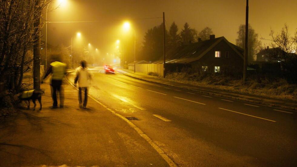 DRATT INN I SKOGHOLT: I 2011-saken ble en 18 år gammel kvinne dratt inn i et skogholt ved Hellerudveien på Oppsal/Trasop i Oslo. Arkivfoto: Eirik Helland Urke / Dagbladet