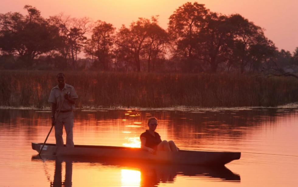 ROMANTISK TUR: Tradisjonell kano, mokoro, er ikke bare en praktisk måte å komme seg rundt i Okavangodeltaet på. De er også veldig romantisk. Foto: RONNY FRIMANN