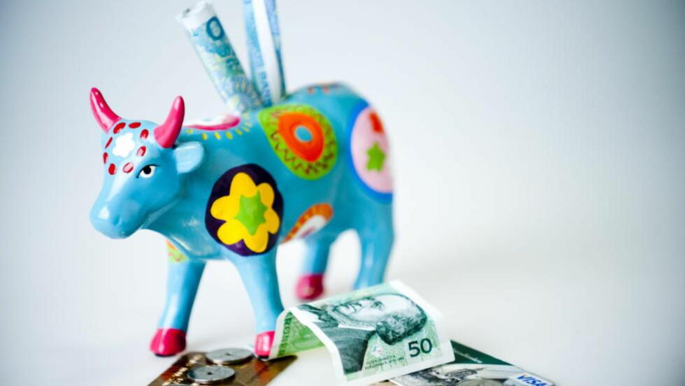 PENGENE KOMMER:  I dag sender Skatteetaten ut skatteoppgjøret til de fleste lønnstakere og pensjonister. Om få dager er pengene på konto. Ekspertene gir deg råd om hvordan du får mest ut av skattepengene. Foto: THOMAS RASMUS SKAUG