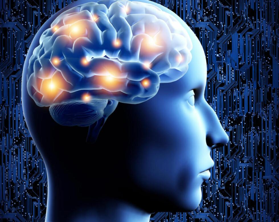 UTFORDRE HJERNEN: Finn noe du liker å gjøre, men ikke gro fast. Det er viktig å utfordre hjernen ved å lære nye ting og være nysgjerrig på ny kunnskap. Foto: COLOURBOX