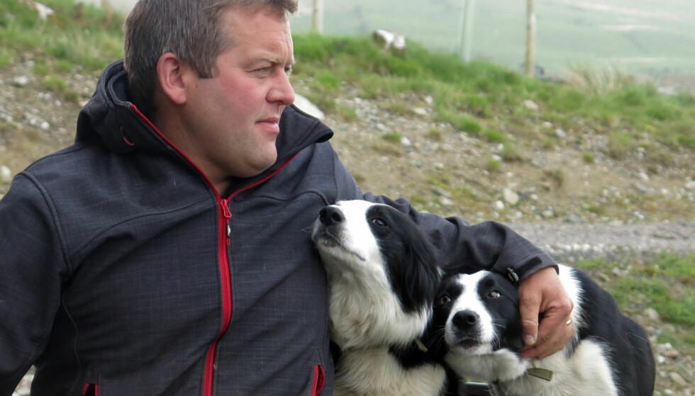 <strong>POPULÆR:</strong> James Rebanks, sannsynligvis verdens mest berømte sauebonde, med hundene Tan and Floss. Foto: NTB SCANPIX / AP / JILL LAWLESS <div><div><br></div></div>