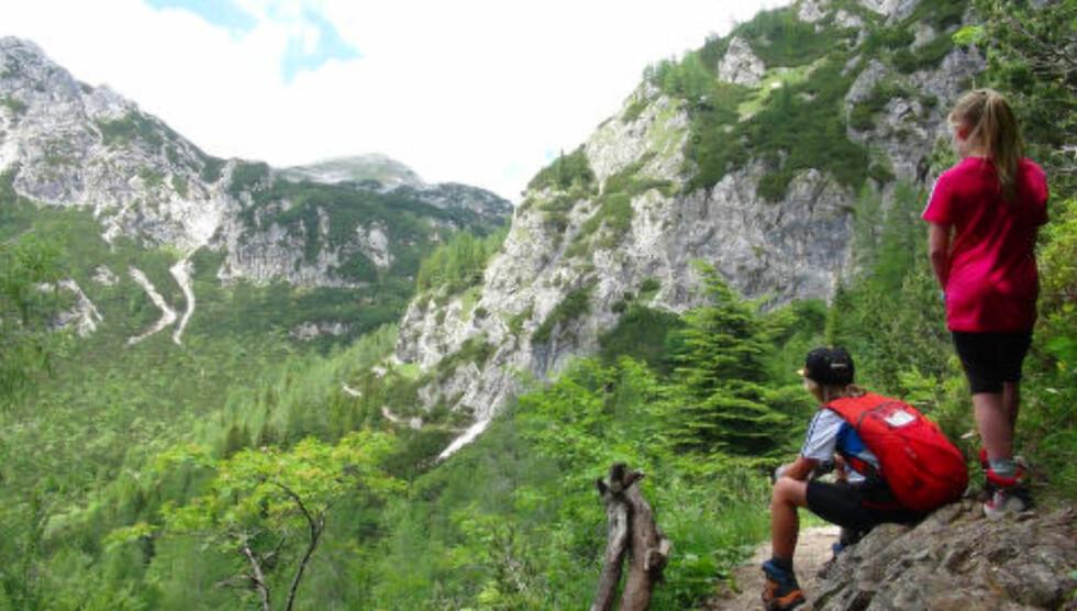 STEMNINGSFULLT: Den vakre naturen med fargerike blomster, himmelblå innsjøer og irrgrønne daler gjør turen opp mot Triglav til en av Europas vakreste fotturer. Foto: RONNY FRIMANN OG TORILD MOLAND