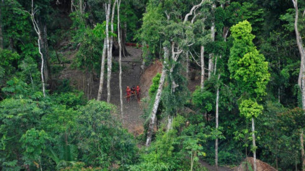 FLYFOTO: Det har tidligere vært eksempler på at FUNAI har kjent til isolerte stammers eksakte tilholdssted og deretter kalt de «ukjente». Det er ikke hundre prosent sikkert at stammene som nå har tatt kontakt med andre først ble oppdaget for tre år siden, men at de har levd isolert, er det ingen tvil om. Foto: AFP PHOTO/Gleison Miranda/FUNAI/Survival