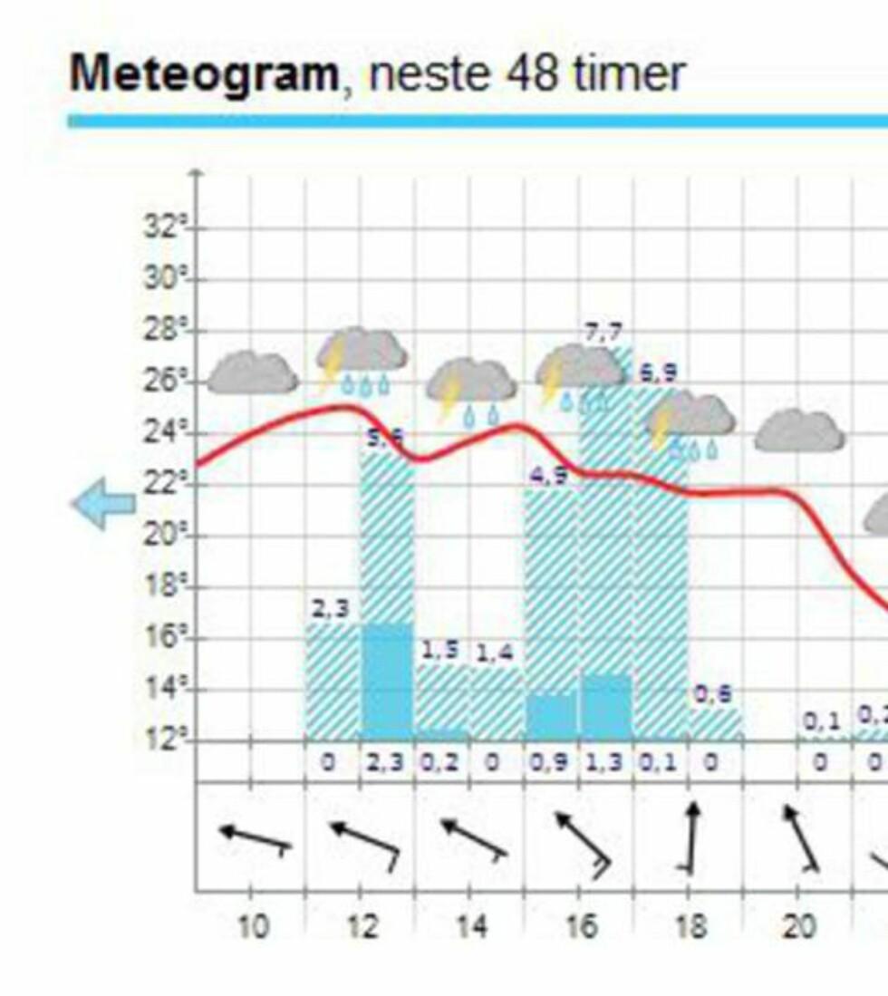 MYE REGN: Det er sendt ut Obs-varsel flere steder på Østlandet. Til Oslo kommer regnet i 12-tida. Skjermdump: Yr.no