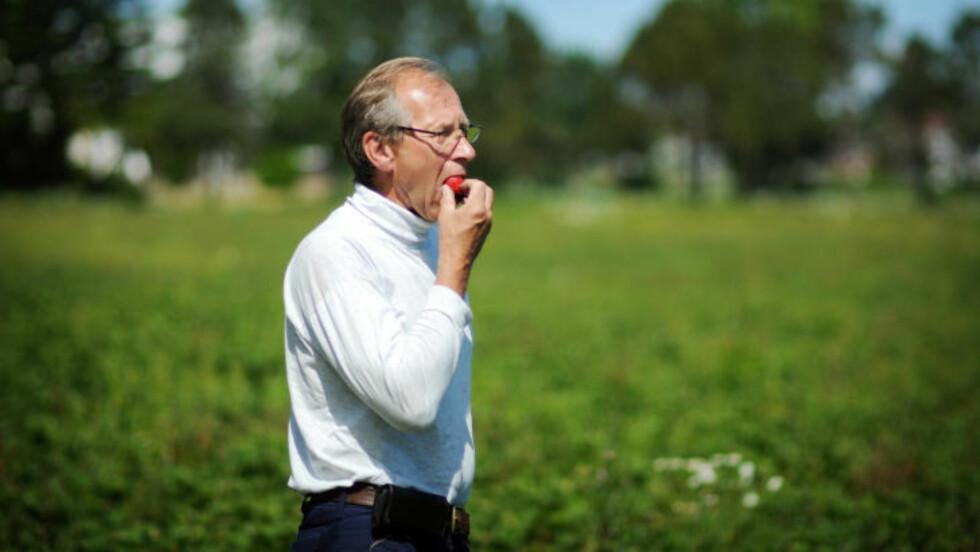 FORTVILER: Jordbærbonde Hans Julius Sanne (61) må la flere tonn flott jordbær henge fordi dagligvarekjedene ikke vil ha dem. Foto: Sindre Grading