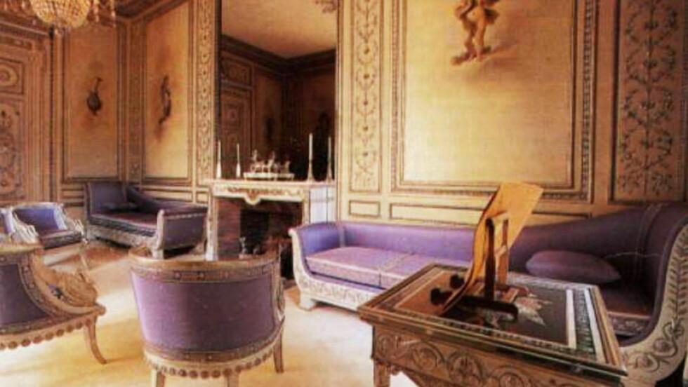 NAPOLÉONS SALONG: Møblene i «Sølvsalen» i Elysée-palasset er blant Frankrikes prekstigste antikviteter. Sarkozy lot hundene sine bite og klore dem i filler. Foto: Elysée