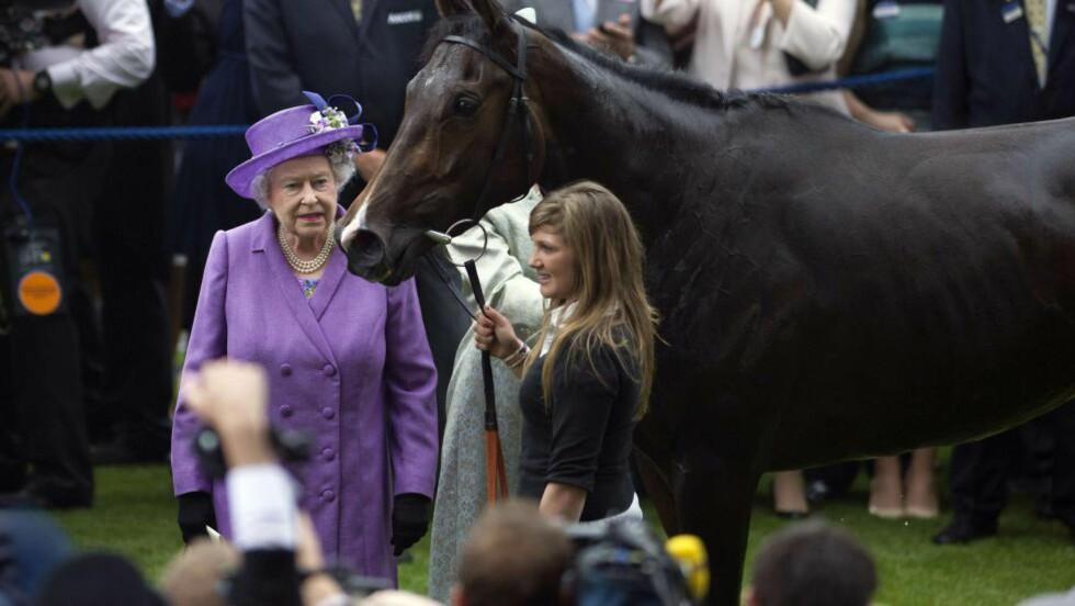 DOPET: Dronning Elizabets hest, Estimate, er tatt for bruk av morfin. Her fra da hesten vant Ascot-løpet i fjor. Foto: AFP PHOTO / CARL COURT / NTB Scanpix