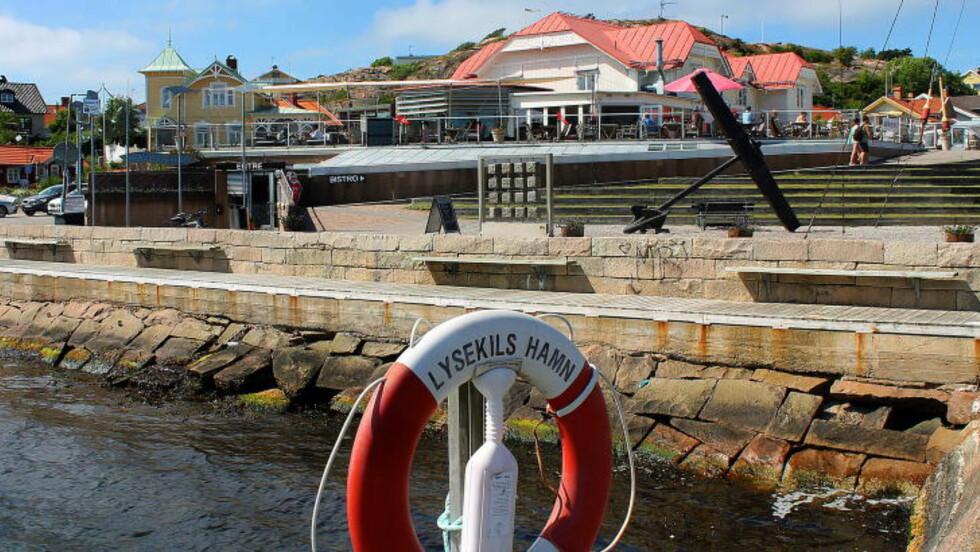 LYSEKIL:  Fra denne brygga utenfor Havets Hus skal de småflekkede rødhaiene slippes ut  den 4. august. Foto: KIRSTEN MARGRETHE BUZZI
