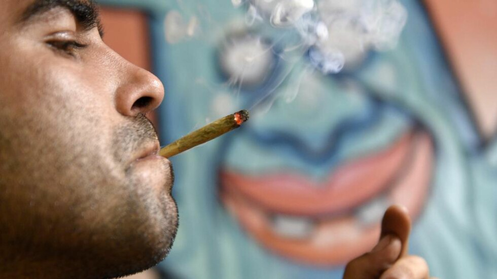 BØR OPPHEVES: Storavisa New York Times mener marihuanaforbudet i USA bør oppheves. Foto: AFP PHOTO/ LLUIS GENE