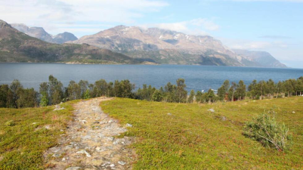 LANGFJORDEN: Den nydelige fjorden greiner ut fra Altafjorden og viser vei til Burfjord og Kvænangen. Foto: Kjetil R. Anda / procycling.no