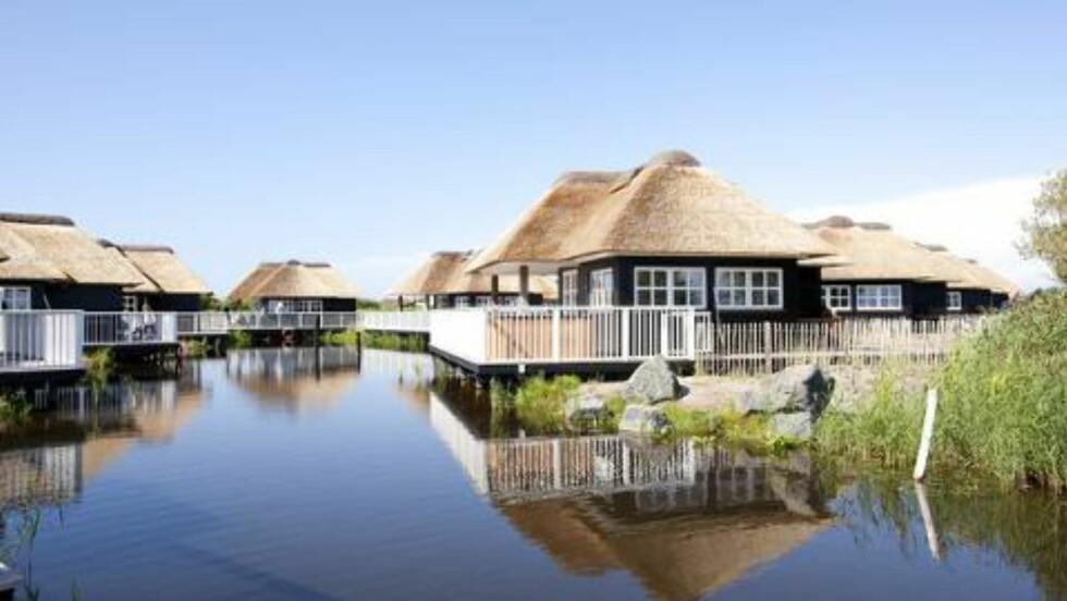LUKSUSHYTTER: «Fiskerhusene» er kåret til Europas beste. Foto: HVIDEBJERG STRAND