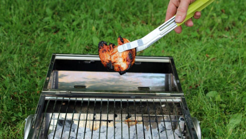 PIKNIK? Da må du ta med deg noe annet enn grillmat: Flere kommuner innfører totalforbud mot grilling i og nær skog og mark, på grunn av brannfare. Foto: KRISTIN SØRDAL