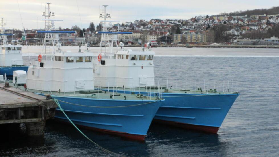 UREGISTRERT: Det britiske sikkerhetsselskapet CAS Global fullførte aldri registreringenav de seks norske ombygde missiltorpedobåtene KNM «Geir», «Hauk», «Jo», «Stegg», «Terne» og «Tjeld» i det britiske skipsregisteret (MCA).  Foto: Forsvaret