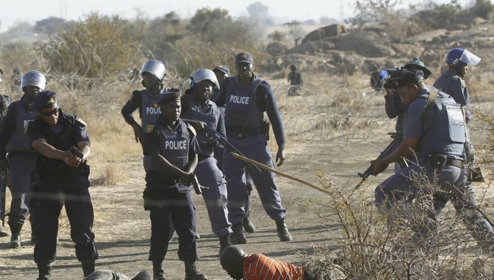TRAGEDIE: Bevæpnet politi kommanderer en skadd gruvearbeider under Marikana-opptøyene der politiet skjøt og drepte 34 gruvearbeidere. Foto: Reuters / NTB scanpix