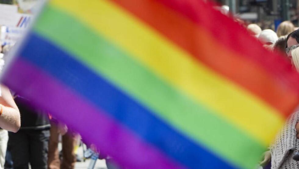 FARGERIKT: Med disse fargene skal Russland males. Her ser vi regnbueflagget - homoflagget vaie.   Foto: Gorm Kallestad / Scanpix .