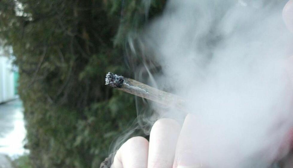 VIL TILLATE: «Legalisering av cannabis vil ikke fjerne hele narkotikaøkonomien, men det vil fjerne en viktig brikke», skriver Tord Hustveit. Foto: Petr Bro?
