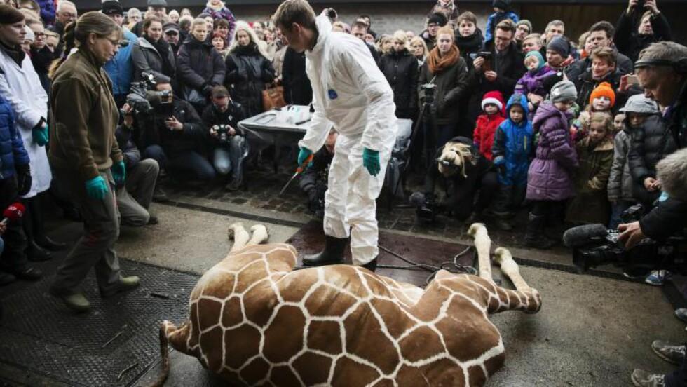 <strong>FULLT INNSYN:</strong> Både besøkende og nyhetsmedier fulgte nøye med på obduksjonen av Marius. Foto: EPA/Kasper Palsnov/NTB Scanpix