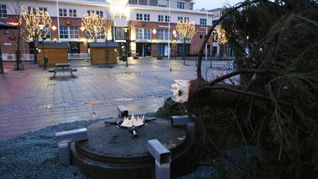FÅTT SEG EN KNEKK: For andre gang på to dager blåser treet over ende. Foto: Tor Aage Hansen