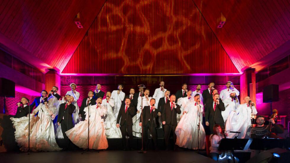 KOR: Oslo Fagottkor lager juleshow i kirka. De ønsker å bruke showet til å normalisere den hverdagslige homokampen. Foto: Oslo Fagottkor