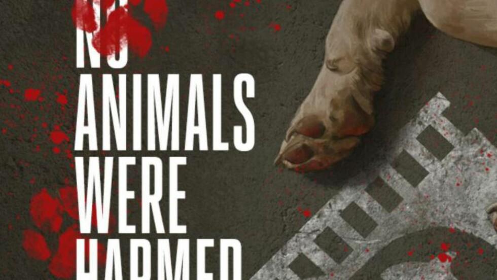 OGSÅ INTERNASJONALT: I filmer eller TV-serier der dyr medvirker, står det ofte «No animals were harmed» i rulleteksten. The Hollywood Reporter mener dette ofte er feil, og viser til flere episoder der dyr er blitt skadd eller har dødd. Når Rubicon TV nå etter alt å dømme skal ha med en tiger i «Lilyhammer» sesong 3, vil NOAH stoppe dem.