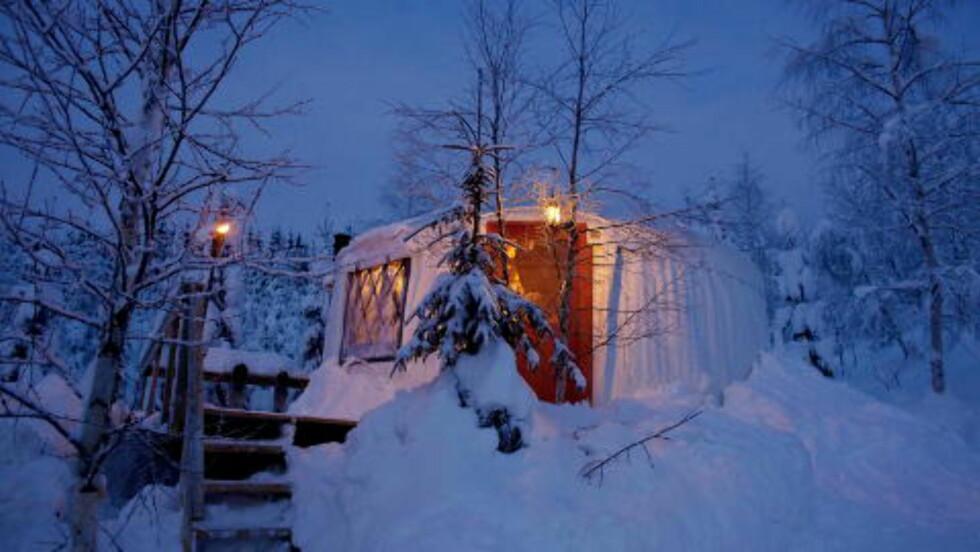 ROMANTISK: Mange utlendinger finner veien til yurtteltene på Halvorseth Camping i Sigdal. Her har den har den nederlandske familien Willemse blant annet satset på luksuriøs camping. Campingen er åpen sommer som vinter. Foto: METTE MØLLER