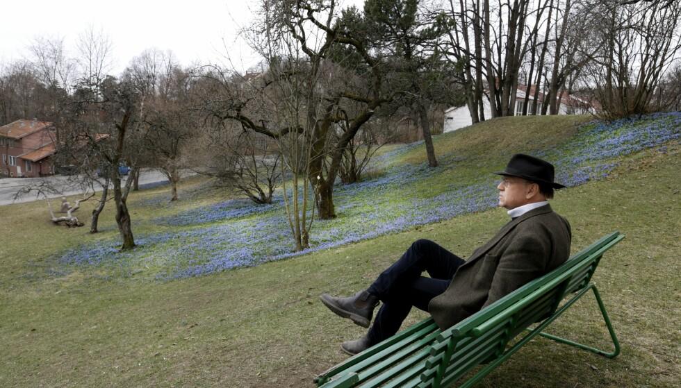 MUNCHS OMGIVELSER: Her vil byantikvaren i Oslo tillate at Melgaards dødshus skal bygges. Munchs villa er revet, men epletrærne hans står igjen. Foto: NTB Scanpix