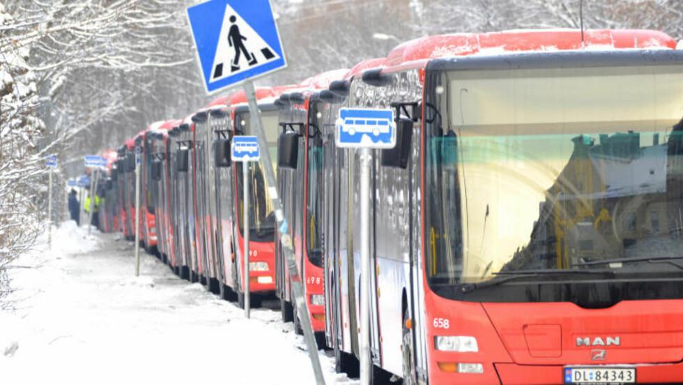 REISE MILJØVENNLIG: 31 prosent oppgir at de har begynt å reise mer miljøvennlig. Foto: Per Løchen / Scanpix