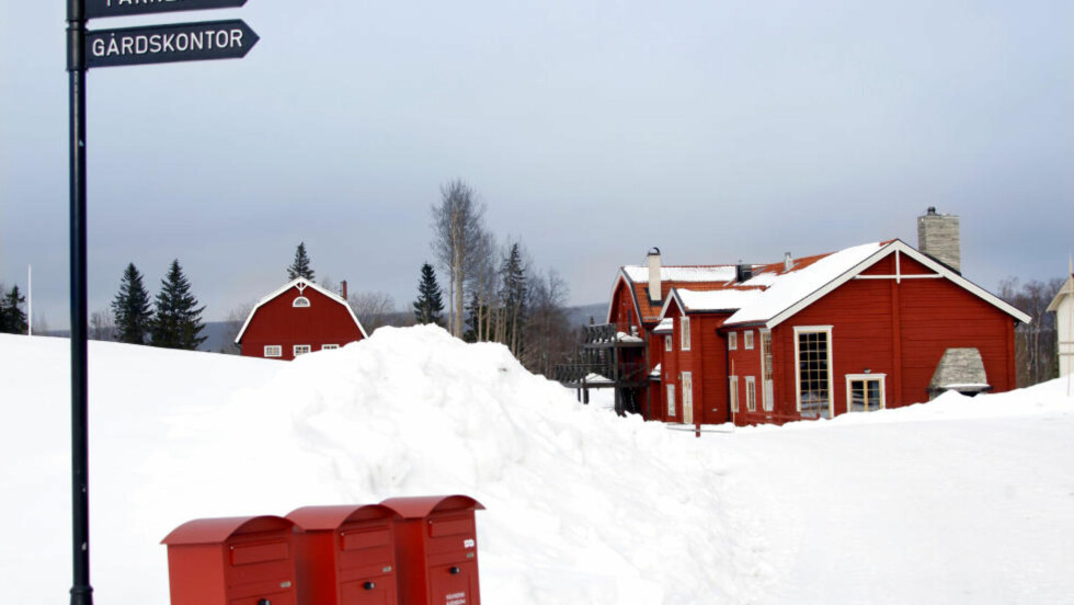 Kortreist mat fra skogen: På Fäviken utenfor Åre serverer Magnus Nilsson delikat mat fra omgivelsene.