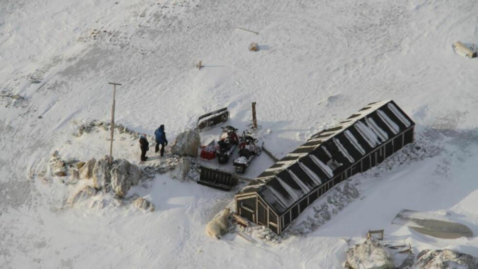 I ØDEMARKA:  Isbjørnen døde da den tok seg inn i en hytte sør på øya Spitsbergen. Foto: Arild Lyssand/Sysselmannen