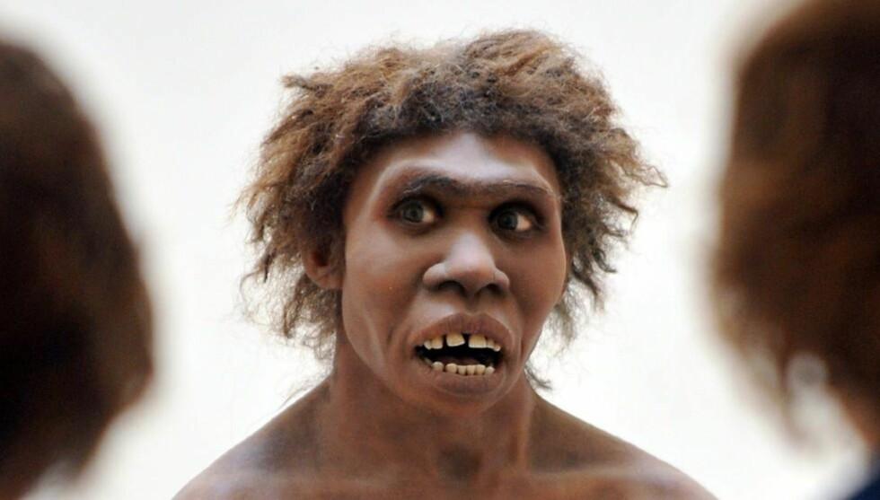 BORTE: Hvorfor døde neandertalerne ut? Det er et av de store spørsmålene innen antropologien. Foto: AFP / PIERRE ANDRIEU / NTB SCANPIX
