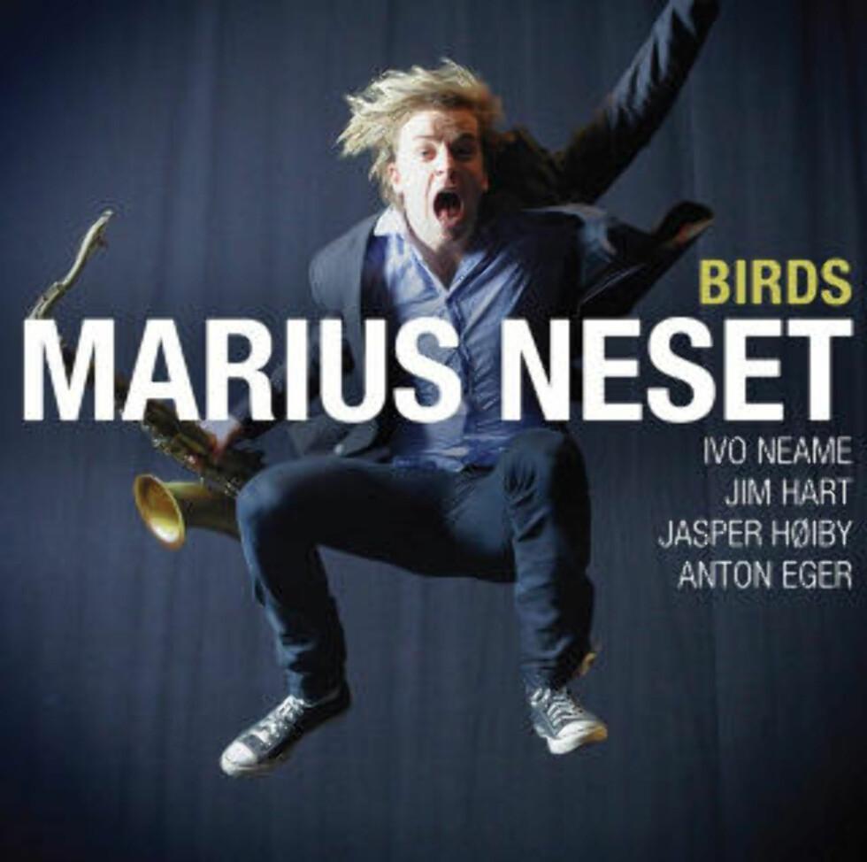 <strong>MARIUS NESET:</strong> Imponerer stort igjen.