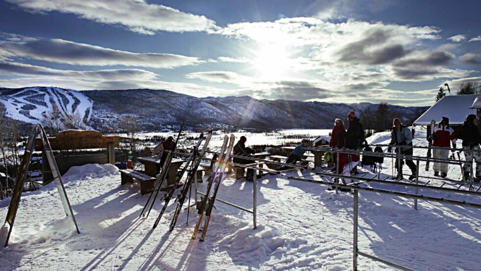 FORSMAK: I løpet av søndag og mandag kan det komme 10-15 centimeter snø i Oslo-området, men snøen forsvinner raskt i løpet av uka. Foto: Ole C. H. Thomassen / Dagbladet