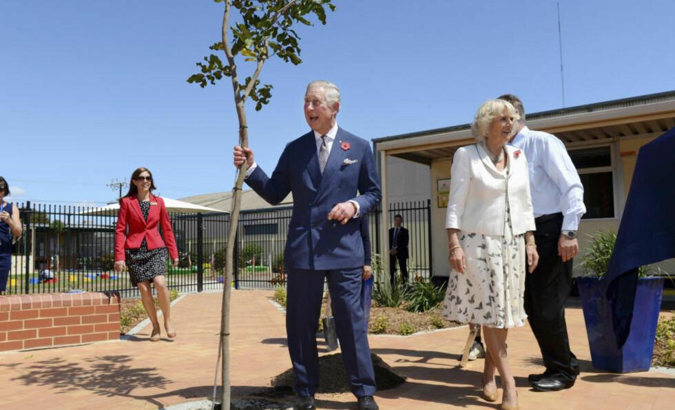 SLÅR ALARM: Prins Charles, her under en treplanting i Australia for to uker siden, er opprørt over verdens håndtering av miljøproblemene. Foto: Tracey Nearmy / REUTERS / NTB SCANPIX