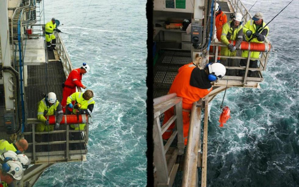 350 METERS DYP: Rekordfisken ble dratt fra 350 meters dyp. I tillegg kommer ferden gjennom lufta, som utgjør 35 meter. Foto: PRIVAT