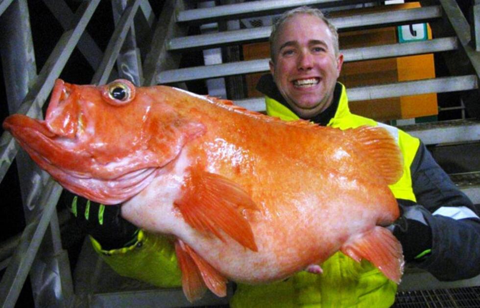 REKORDFANGST: - Jeg ble temmelig sliten i hånda, sier Alexander R. Thomassen. Her med rekordfisken på 12,14 kilo. Foto: PRIVAT